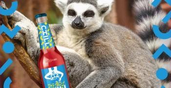 AB InBev Efes робить літо CHILLним із новим смаком CHILL Smoothy