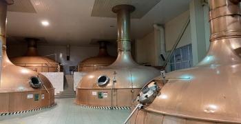 Компанія AB InBev Efes Україна привідкрила завісу виробництва безалкогольного пива